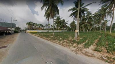 ที่ดิน 3500000 ชลบุรี บางละมุง โป่ง