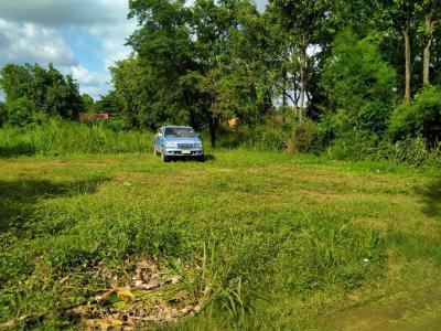 ที่ดิน 3000000 บุรีรัมย์ เมืองบุรีรัมย์ เสม็ด