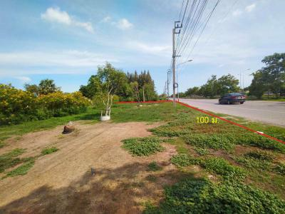 ที่ดิน 65000 กรุงเทพมหานคร เขตประเวศ ประเวศ